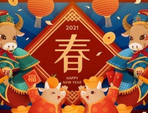 中天安驰祝您春节快乐!